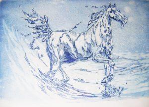 Caballo de agua - 21x30cm - Aguafuerte